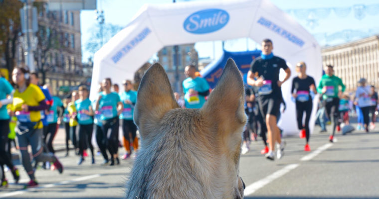 Поддержим участников Wizz Air Kyiv City Marathon