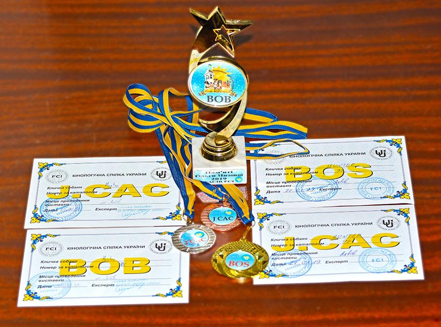 Медаль и кубок FCI CACIB