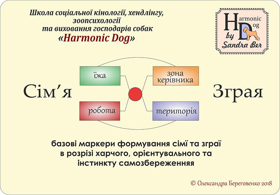 доминирование у собак