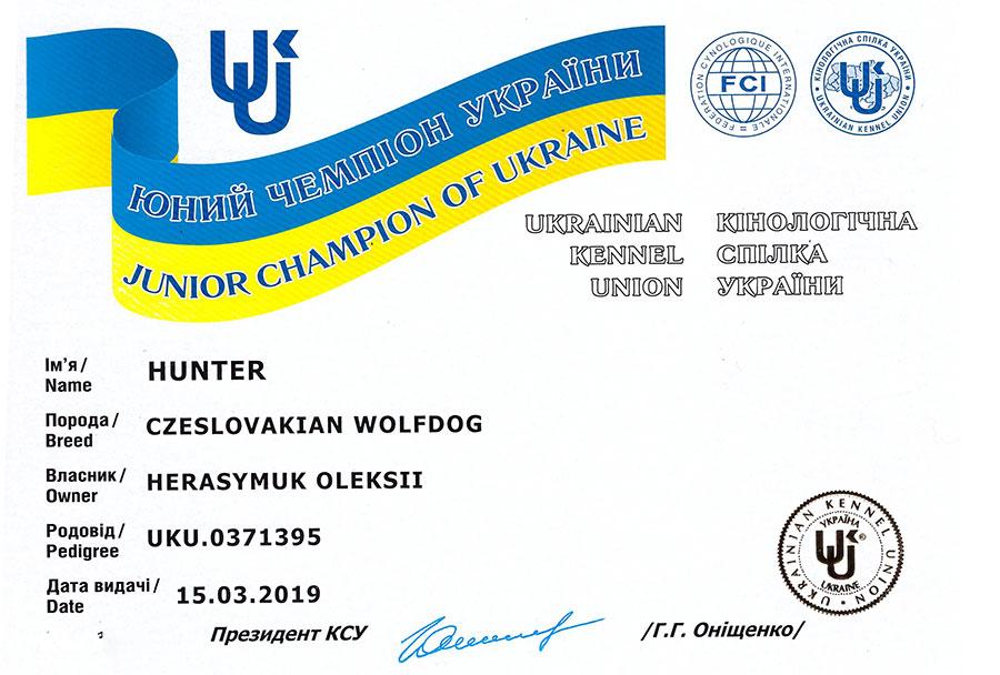 Юный Чемпион Украины по системе КСУ
