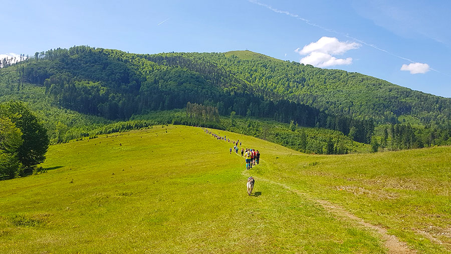 Гора Цицька вид снизу
