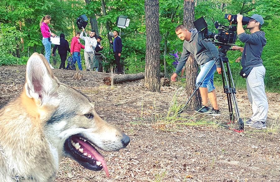Чехословацкий волчек в художественном фильме